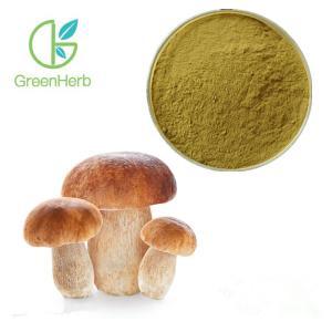 Buy cheap GreenHerb Supply Natural Boletus Edulis Extract Polysaccharide 10%~50% product