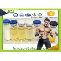 Quality Testosterone Enanthate Anabolic Steroids 600mg / ml * 100ml Bodybuilder for sale