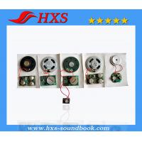 China China Manufacturer Greeting Card Sound Chip/ High Quality Sound Module on sale