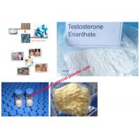 Quality Safe Injectable Anabolic Deca Nandrolone Decanoate Steroids Powder CAS 360-70-3 for sale