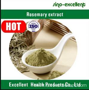 China Rosemary Extract wholesale