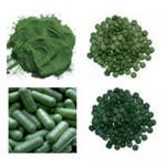 Buy cheap Organic Spirulina,Chlorella,Barley grass powder product