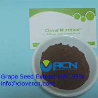 Buy cheap ACNS00199 Grape Seed Extract OPC 95% grape supplement/Polyphenols 85% | A Clover from wholesalers