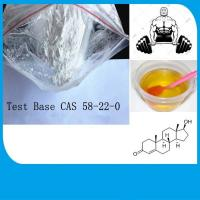 Buy cheap Testosterone Base Anabolic Steroid White Powder For Body Building CAS 58-22-0 product