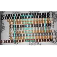 Buy cheap Quality 5-40 inches horse tail hair and horse mane hair in all natural colors product