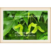 Quality CNS00509 Truncatum Extract Nervonic Acid 90%-98% GC China | A Clover Nutrition Inc  | Fast Delivery and guarantee goods for sale