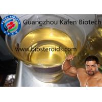 Male Muscle Oil Injection Durabolin NPP Nandrolone Phenylpropionate
