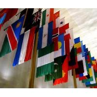 China World′s Flag, Knitted Polyester 120GSM/Spun Polyester 160GSM (NF01F06066) wholesale