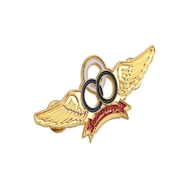 Buy cheap 50mm Pilot Wing Badge from wholesalers