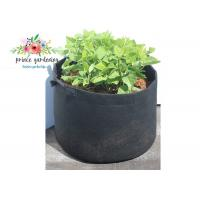 Buy cheap 25lb indoor outdoor Classic Line Tequila Sunrise Fabric Planter garden bags product