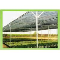 Buy cheap Red de la sombra, paño de la sombra, vela de la sombra, redes del shading de Sun from wholesalers