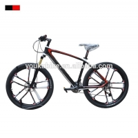 China Popular design Complete carbon fiber mountain bicycle made in China for sale/Carbon fibre Mountain bike frame on sale