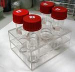 Wine Bottle Acrylic Rack With Customer's Design