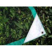 Buy cheap Olive Net,Nets for the Collection Olives product