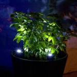Buy cheap 2 Piece Solar led spotlight kits for garden flower bed lighting product