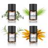 Buy cheap Natural Antibacterial Essential Oils For Air Freshener Diffuser 0.5kg Per Bottle from wholesalers