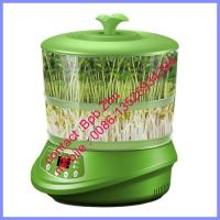Quality small bean sprout growing machine, home bean sprout growing machine for sale