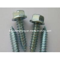 Buy cheap Hex Washer Head Self Drilling Screw/Self Tapping Screw (DIN7504) product