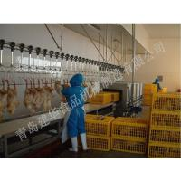 Quality Poultry slaughtering line equipment boning equipment and segmentation for sale