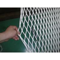 Buy cheap PP Safety Fencing Multi Sport Nets , Ice-Hockey Net 100gsm - 500gsm product