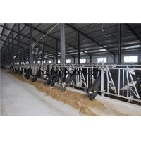 Buy cheap Good Price Poultry Farm Building Steel Structure Sheds for Caw /Chicken/ Goats product