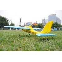 Buy cheap Beautiful design micro Remote control Airplane with 2.4GHz Multifunctional Transmitter product
