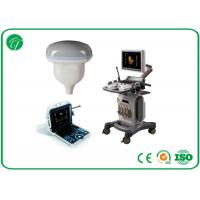 China Portable B Mode Ultrasound Scanner With Windows System Ultrasound Imaging Equipment wholesale