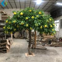 Buy cheap Grapefruit Citrus Artificial Fruit Tree For Home Garden Scenic Decoration product