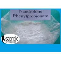 Buy cheap 99% High Purity Nandrolone Steroid Powder CAS 62-90-8 Nandrolone phenylpropionate product