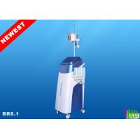 6 Dual handles Cryolipolysis Lipolaser Beauty Equipment BR8.1