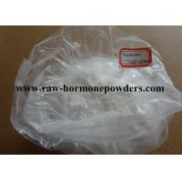China Oral Testosterone Undecanoate Testosterone For Building Muscle 5949-44-0 wholesale