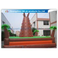 China Outdoor Brown Mountain Inflatable Rock Climbing Wall For Teenagers Games on sale