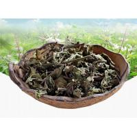Buy cheap Clerodendranthus spicatus Thunb.C. Y. Wu.Leaves & stem tea;Mao xu cao;reat for kidney disease; lower uric acid,tcm,herb product