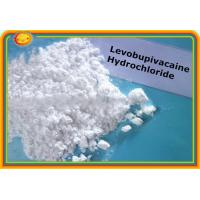 Buy cheap Topical Pain Relief Levobupivacaine Hydrochloride 27262-48-2 Hydrochloride Levobupivacaine product