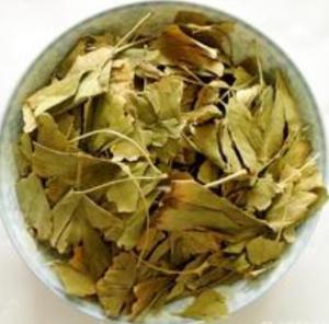 Buy cheap Ginkgo leaf , Ginkgo Biloba dried leaves product