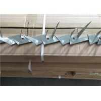 China Hot Dipped Galvanized Anti Climb Spikes Rooftop Razor Spikes For Security on sale