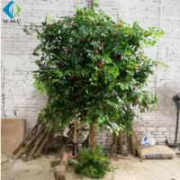 Buy cheap 2.5m Height Artificial Fruit Tree , Litchi Fruit Tree For Rainforest Landscaping Decoration product