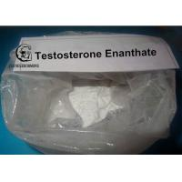 China Testosterone Enanthate Powders HPLC Tested 99% in performance enhancing cycles wholesale