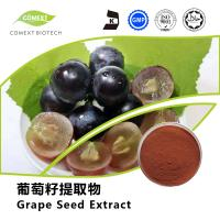 Buy cheap Hot Sale Grape Seed Extract 95% OPC Red Brown Powder UV Testing product