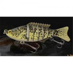 Buy cheap Amorce de poissons de Sun product