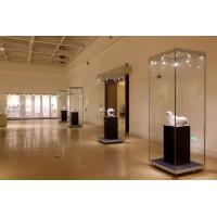 Buy cheap Vision free standing hinged door laminated glass display cases F-04 product