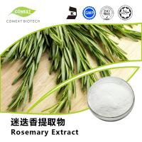 Factory Price Rosemary Leaf Extract Ursolic Acid 25%~98% HPLC