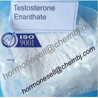 China Testosterone enanthate Muscle and Strength gain Testosterone Hormone male hormone steroids wholesale