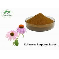 Buy cheap Echinacea Extract Powder 2% Cichoric Acid product