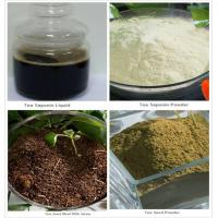 Buy cheap Tea Saponin/Tea Seed Powder product