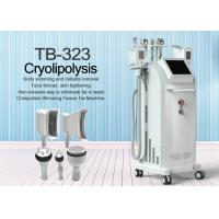Buy cheap Touch Screen Vertical Cryolipolysis Machine, CRYO6S Body Slimming Machine from wholesalers
