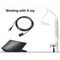 Top Quality Digital Imaging Dental X Ray Sensor Made in Trident Italy