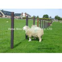 Buy cheap Hot Dipped Galvanized Field Fence , High Tensile Woven Wire Fence Rolls product