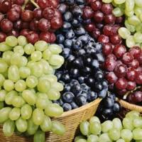 Buy cheap Fresh Grapes product