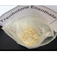 Quality White Clomiphene Citrate Oral Anabolic Steroid Powder Anti Estrogen for sale